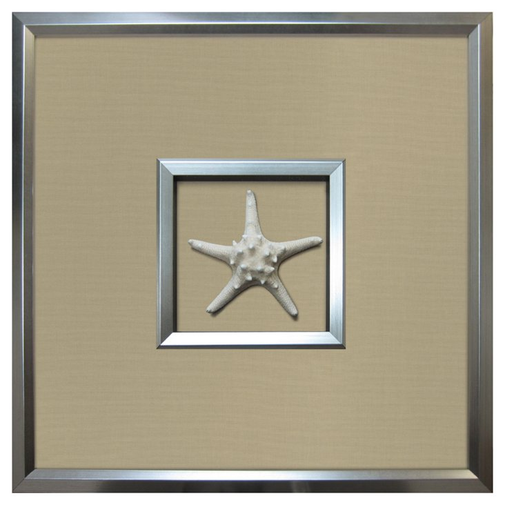 Authentic  Starfish Framed