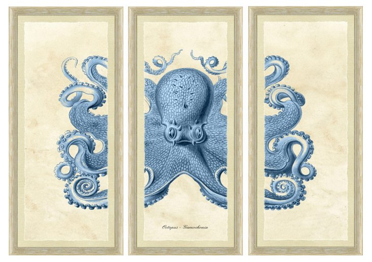 White Wash Framed Octopus Triptych