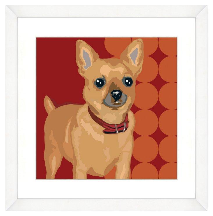 White Framed Chihuahua Dog Print