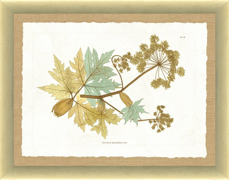 Nature Print VII