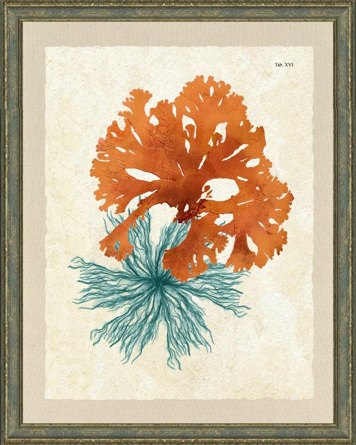 Coral and Teal Sea Life Print I