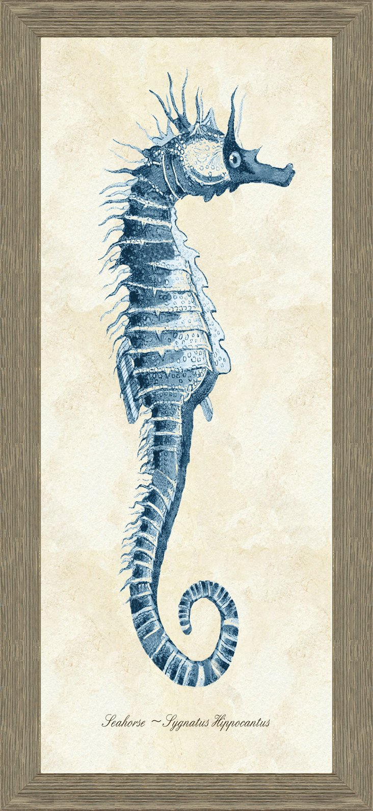 Gold Lip Barn Wood Framed Sea Horse