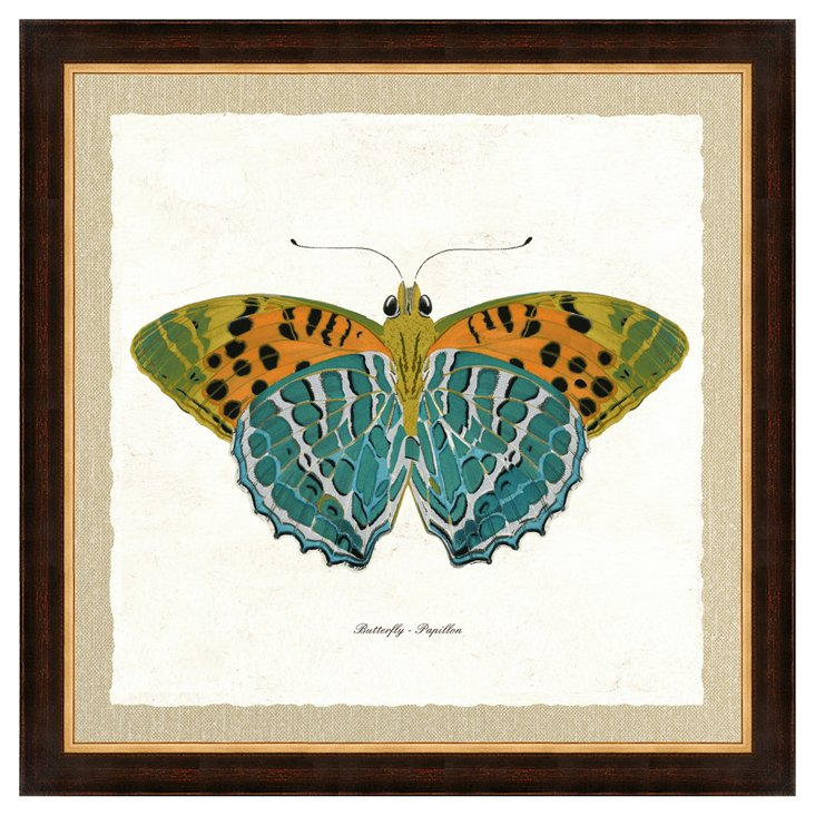 Brown and Gold Framed Butterfly III