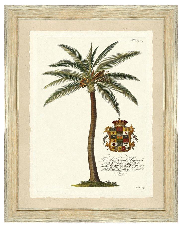 Palm Print II