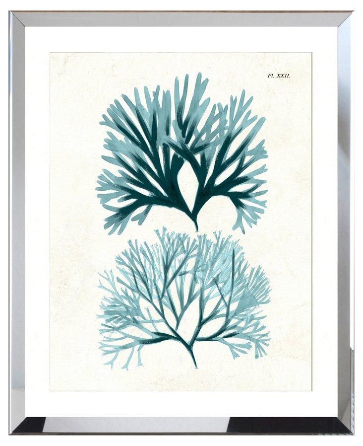 Teal Seaweed I, Framed Print