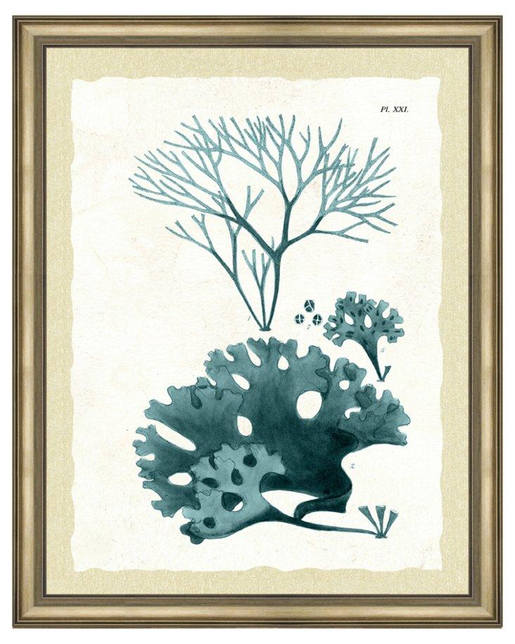 Teal Seaweed II, Framed Print