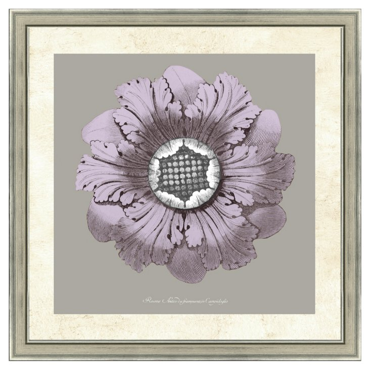 Lavender and Gray Rosette II