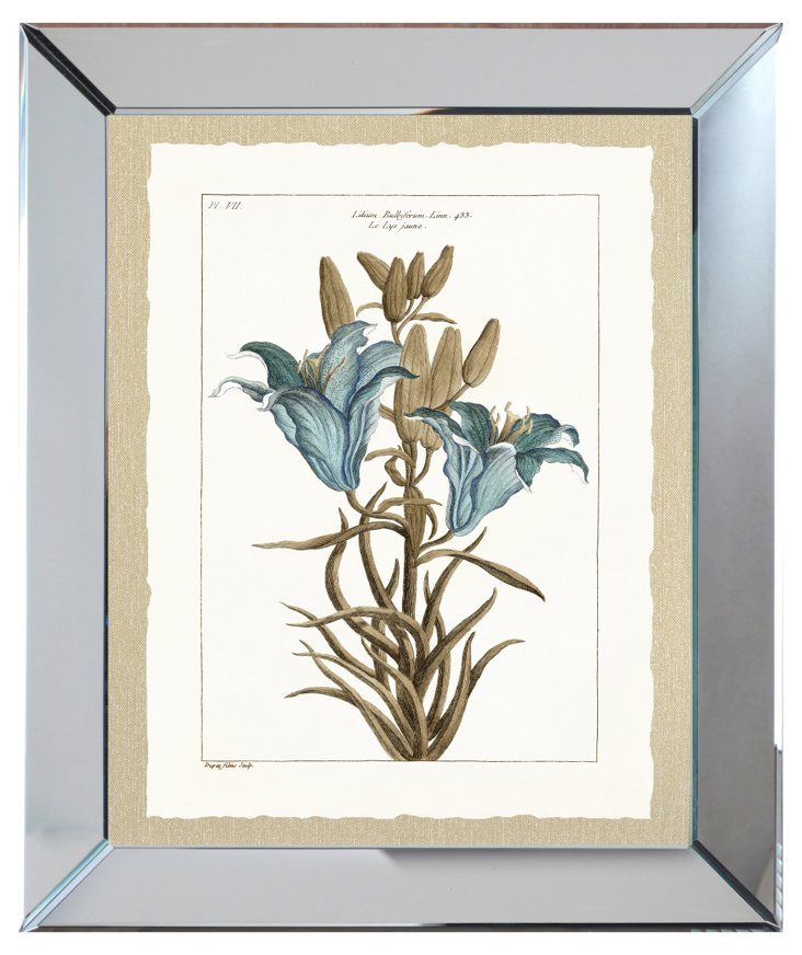 Mirror Framed Blue Botanical Print II
