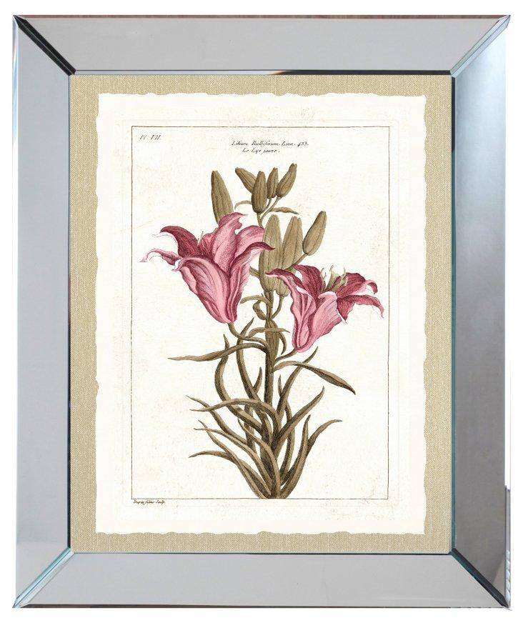 Mirror Framed Pink Botanical Print I