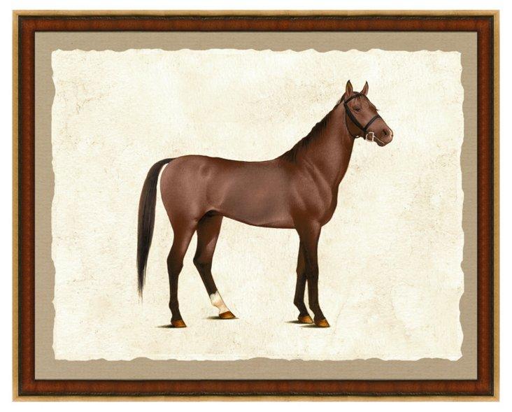Horse Print I