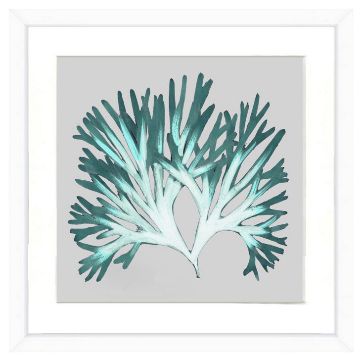 Icy Tone Seaweed I