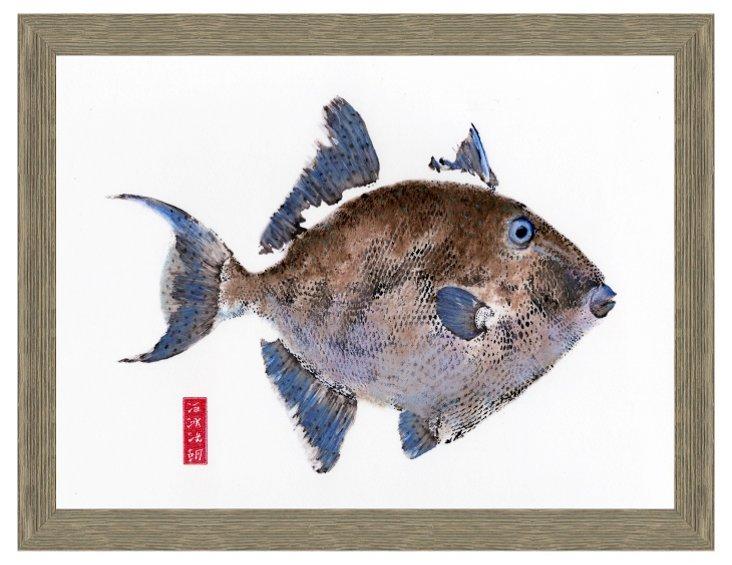 Triggerfish Print