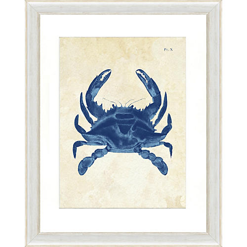 Navy Crab Print