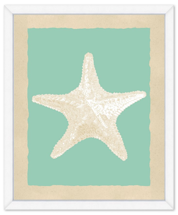 Teal and Cream Starfish Print