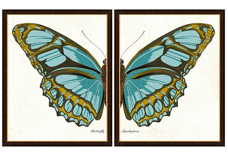 Butterfly Diptych II