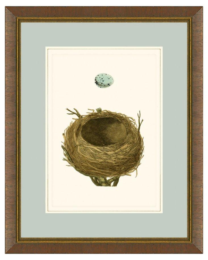 Egg and Nest Print
