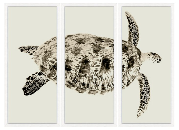 Sepia Turtle Triptych