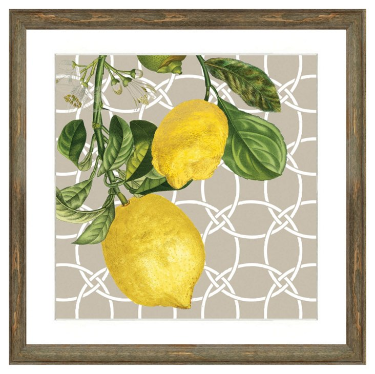 Square Lemon Print II