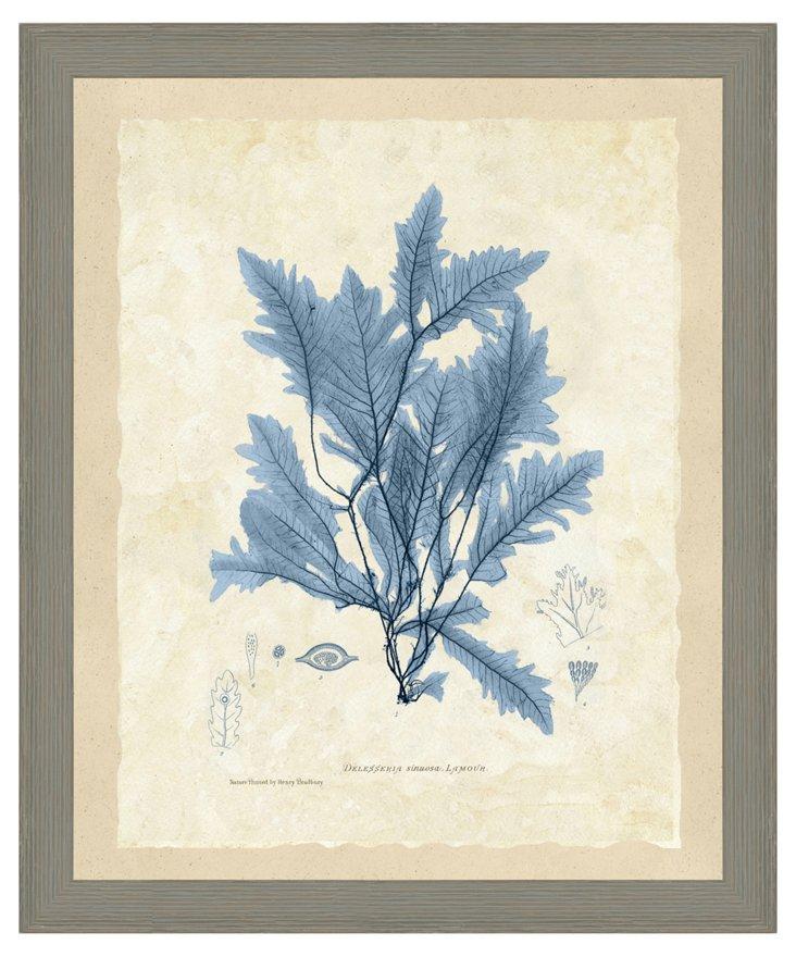 Blue Seaweed Print I