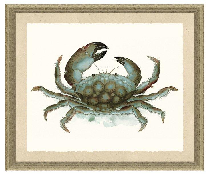 Watercolor Crab I