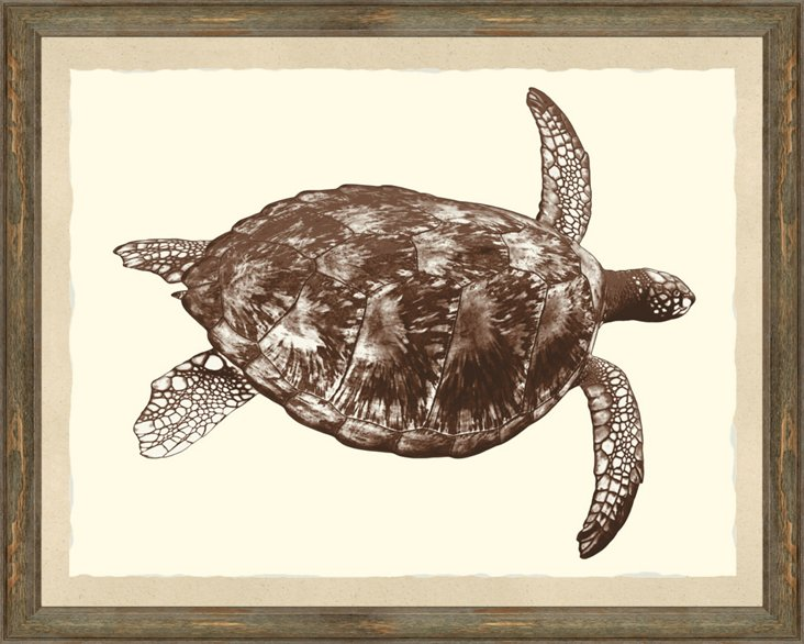 Sepia Turtle Print