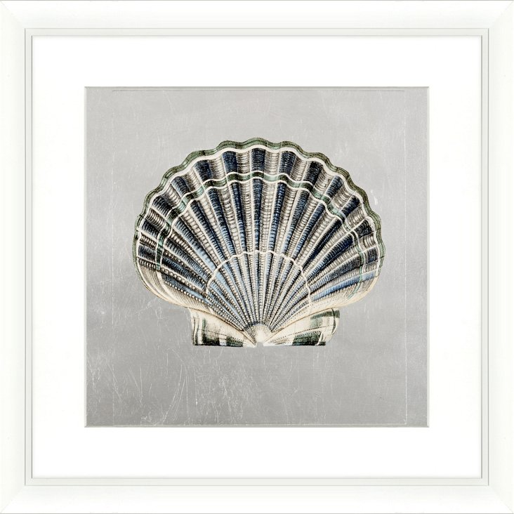 Silver-Leaf Scallop Shell