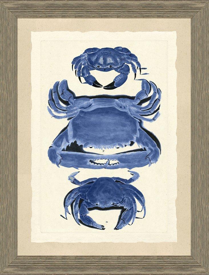 Blue Crab Print I