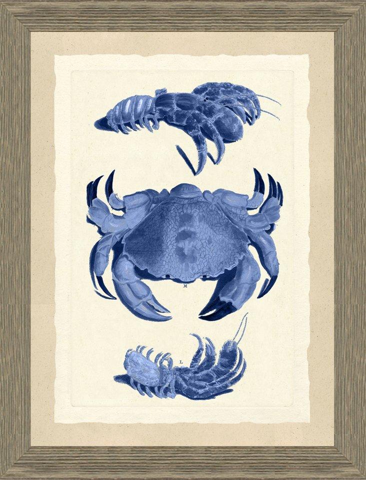Blue Crab Print II