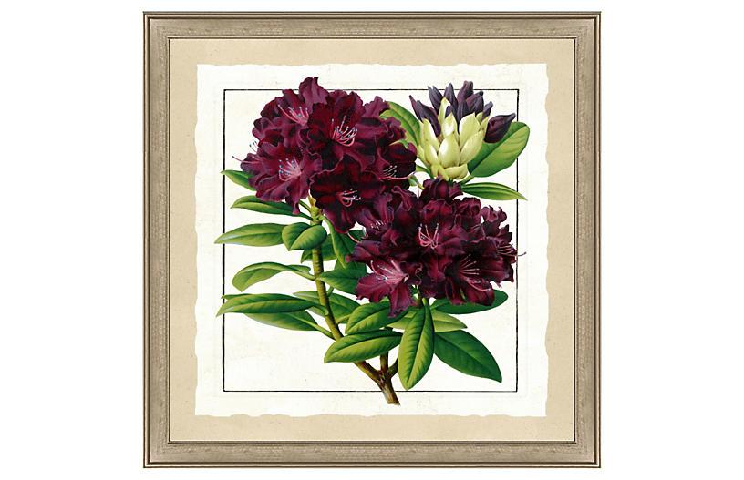 Bold Botanical Print I