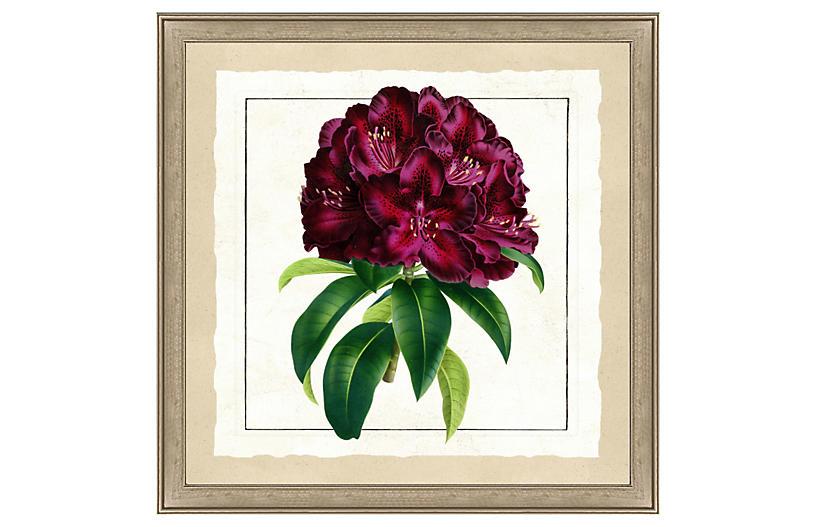 Bold Botanical Print II