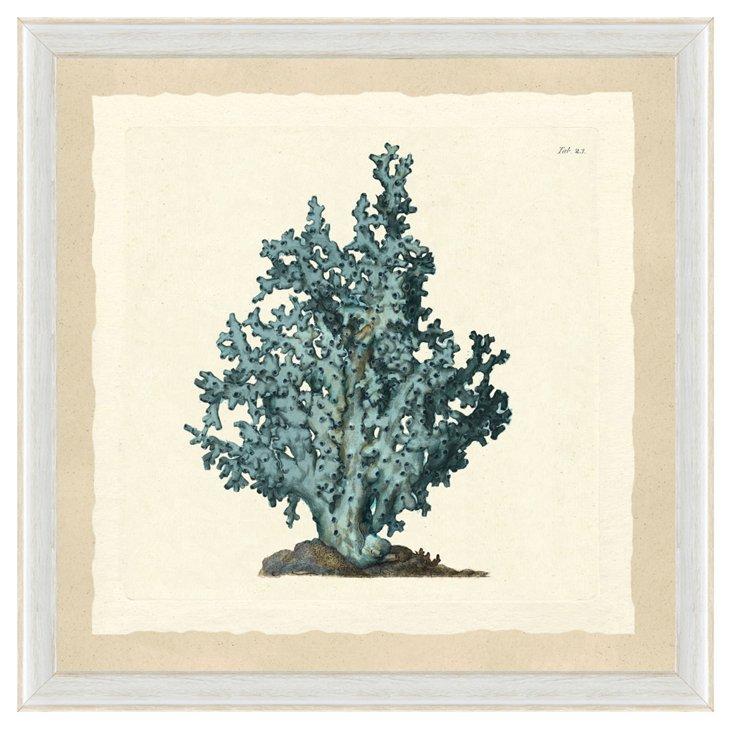 Teal Seaweed Print I