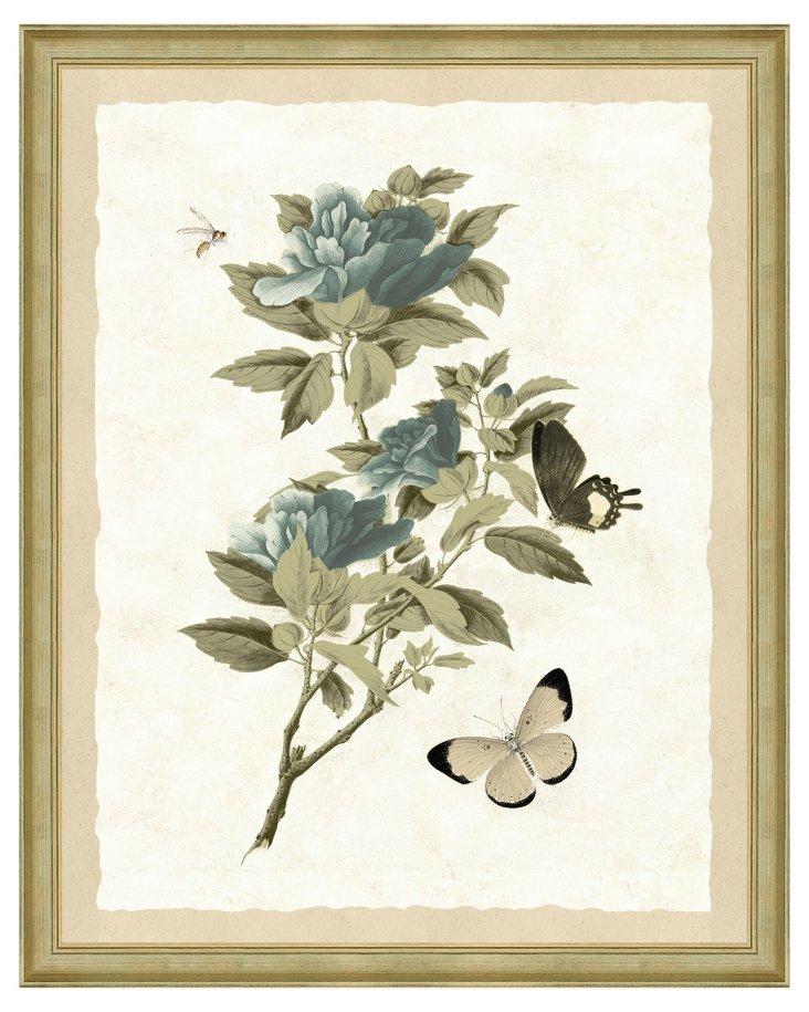 Sage Blue Winterthur Botanical Print I