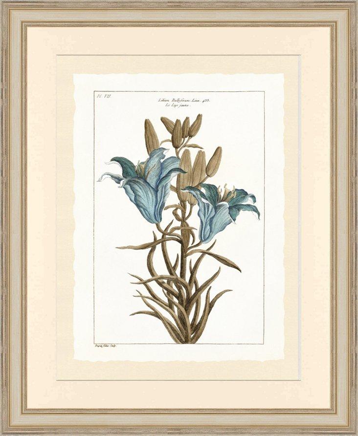 Silver Framed Blue Botanical Print