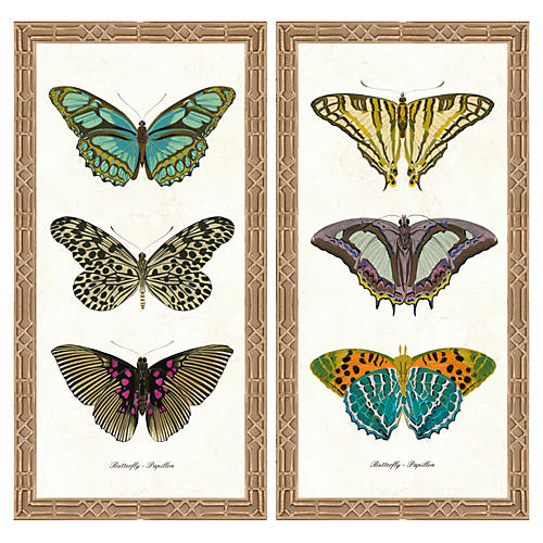 Butterfly Diptych I