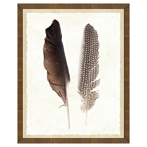 Natural Feathers Print II