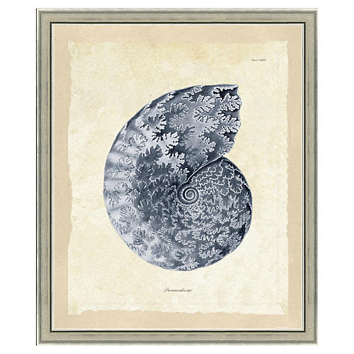 Blue Sea Life Print I