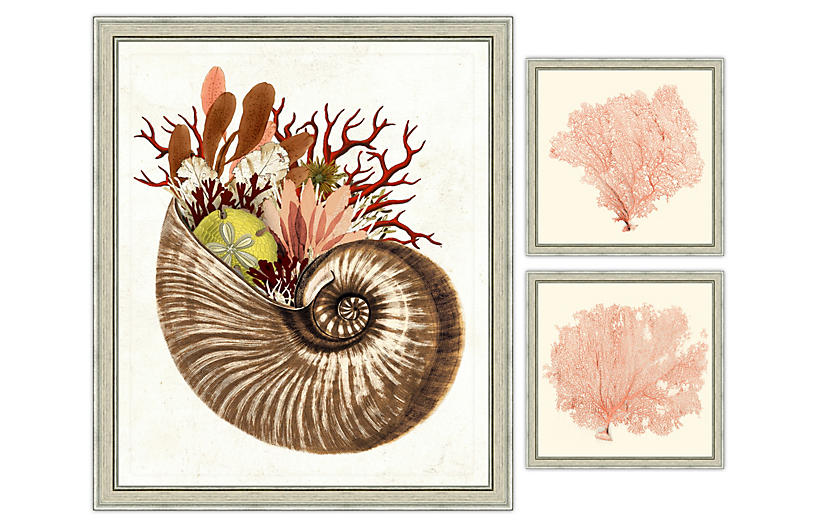 Coral Sea Life Collection