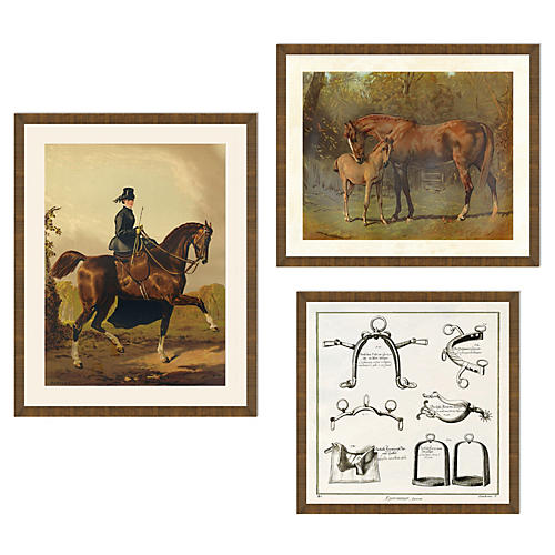 Equestrian Collection II