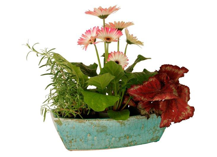 Window Ceramic Planter