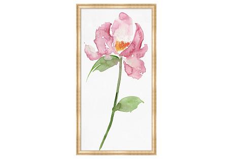 Exotic Blossom 1