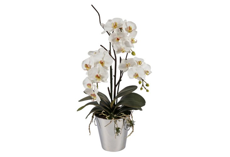 "29"" Orchid in Vase, Faux"