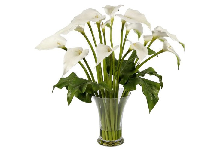 Calla Lilies in Glass Vase, Large