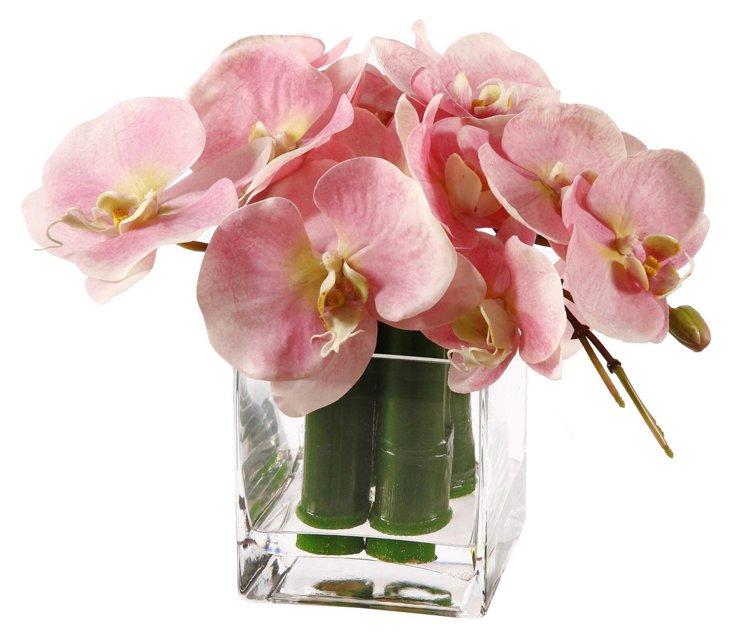 "10"" Phalaenopsis & Bamboo in Glass Vase"