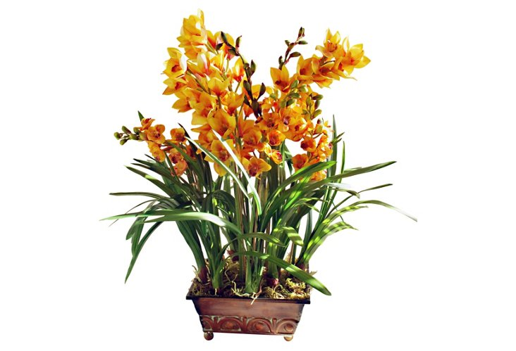 Orchid Planter, Large, Gold