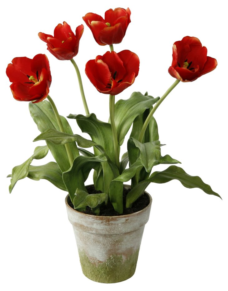 "18.5"" Tulips in Pot, Vermilion"