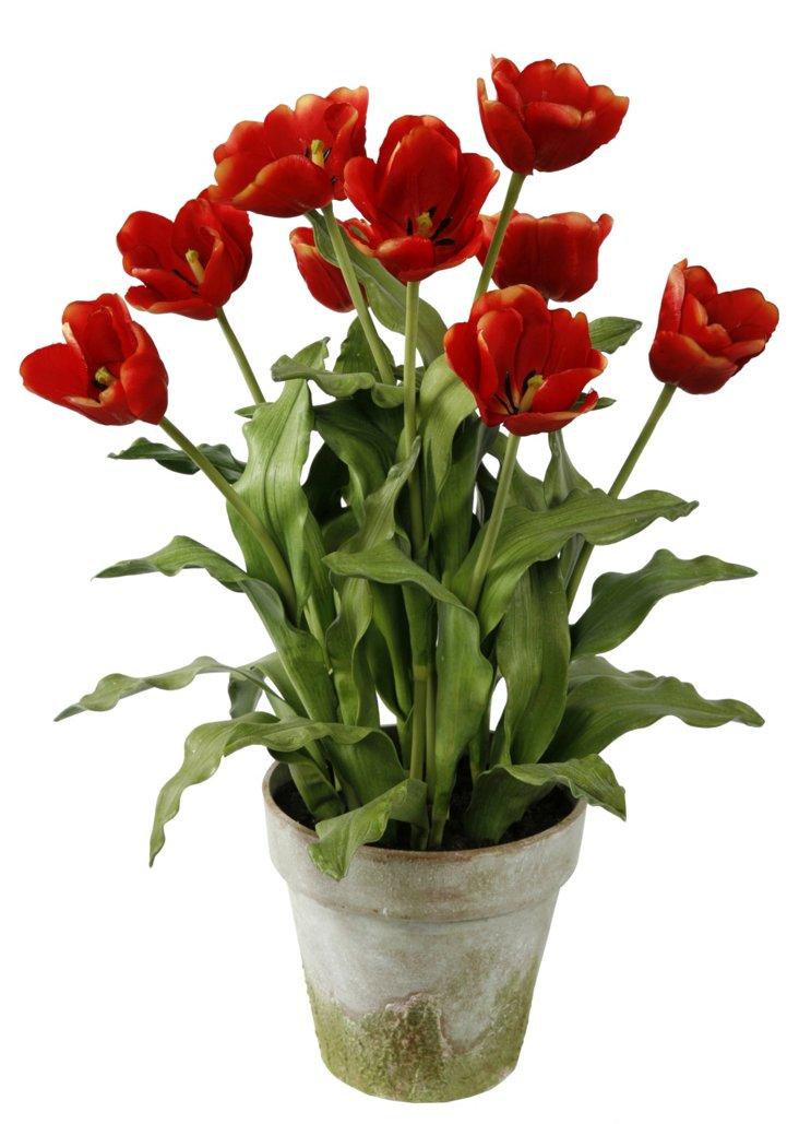 """23"""" Tulip in Pot, Vermilion"""
