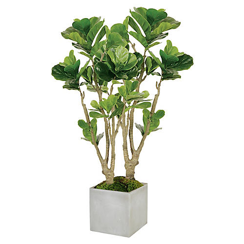 "55"" Fiddle Leaf Fig Tree Planter, Faux"