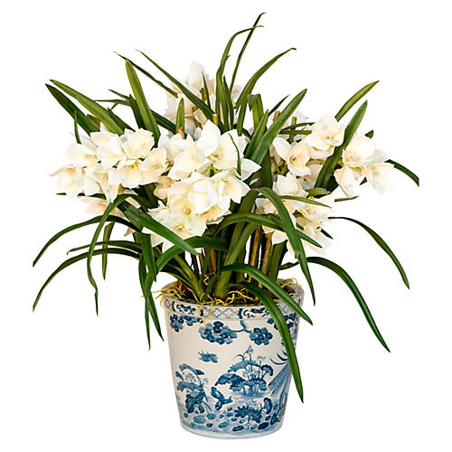 "42"" Cymbidium Plant in Pot, Faux"