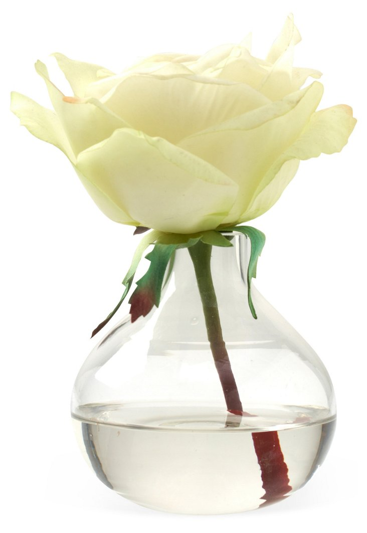 Rose in Bubble Vase, Cream