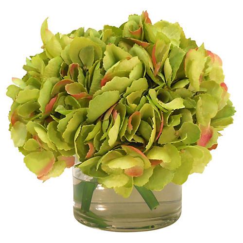 """9"""" Hydrangea in Cylinder Vase, Green"""
